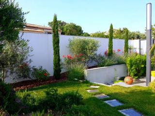 Création de jardin contemporain Marseille Aix-en-Provence