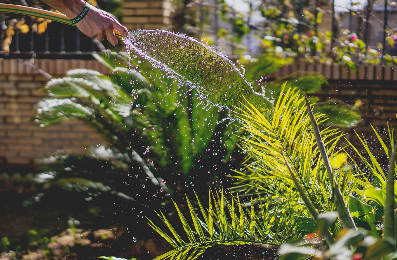 Produits bio et engrais spécial jardinage