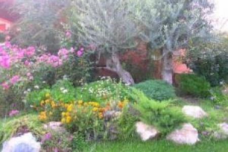 Un jardin sur-mesure avec un paysagiste professionnel près de Marseille !
