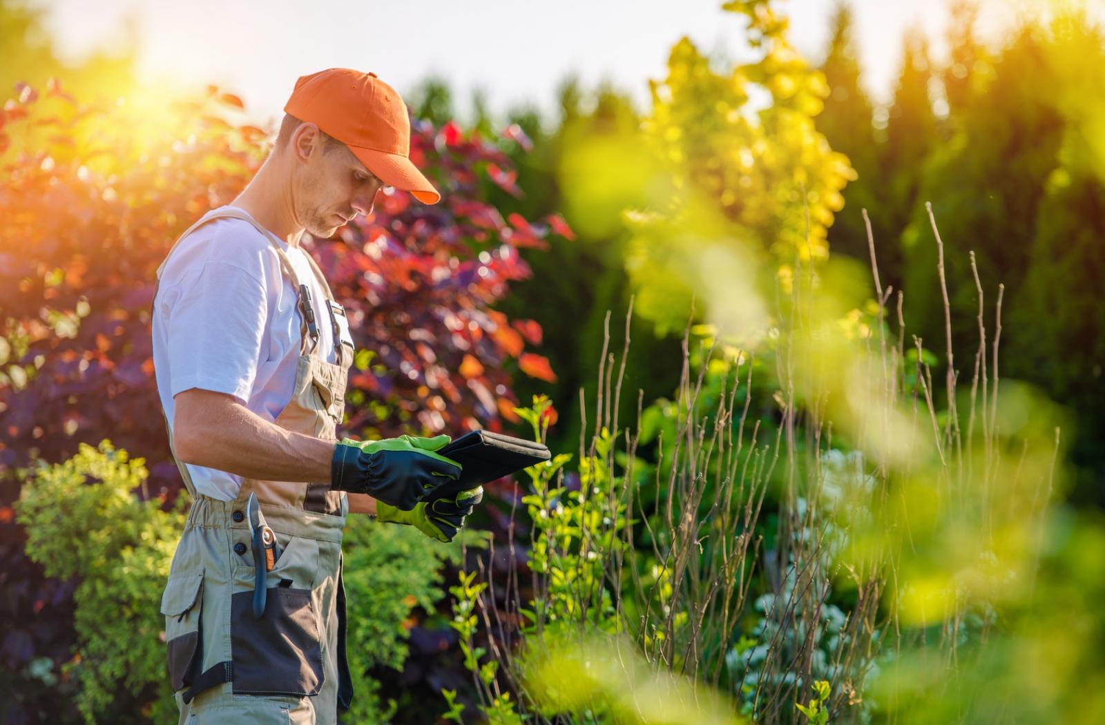 Pépinière spécialisée gazon, plantes et terre végétale à Plan de campagne