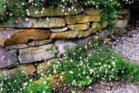 Muret en pierres