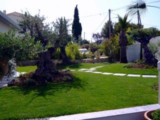 Création de jardin exotique au Rove (13)