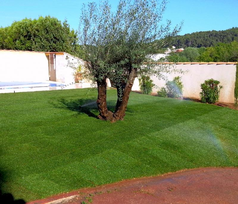 Lawn grass rolls sale in aix en provence for Rouleau jardin