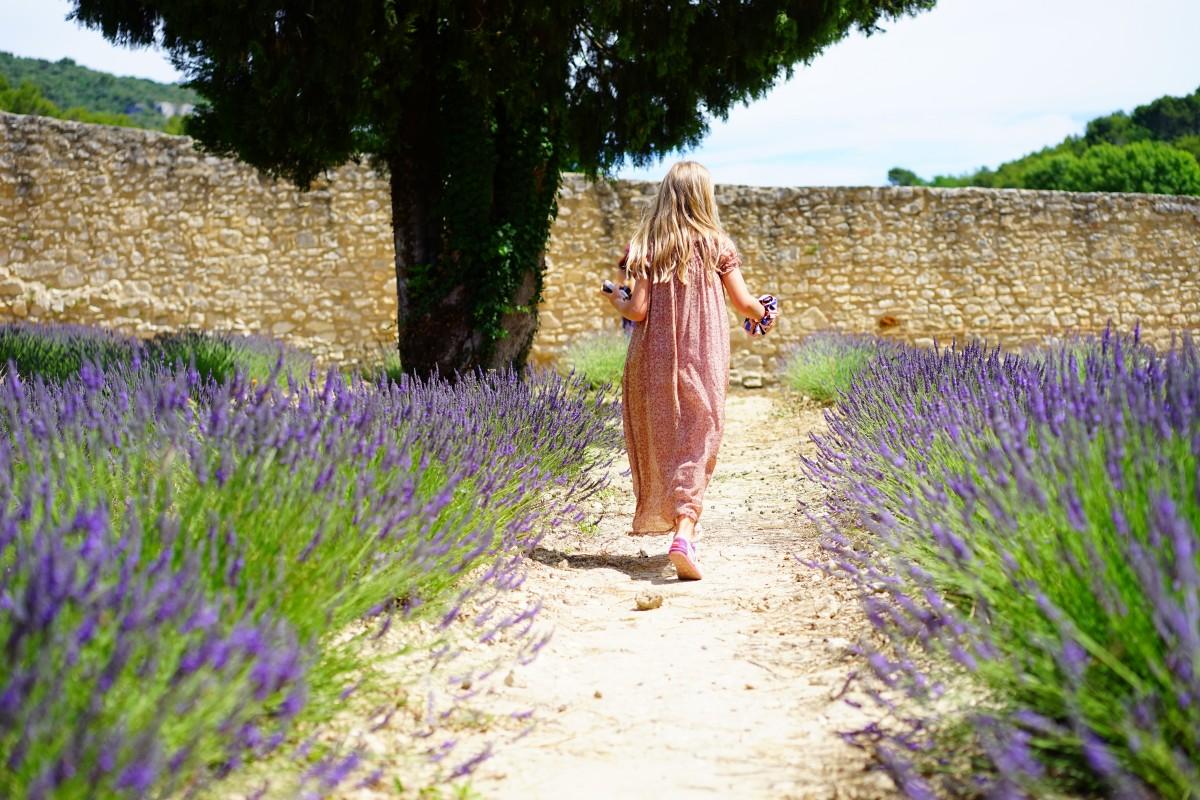 Sun of Provence