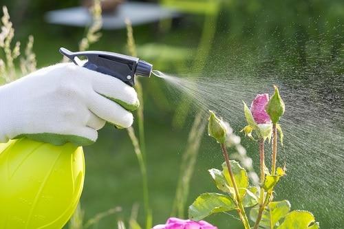 Vaporisateur jardin
