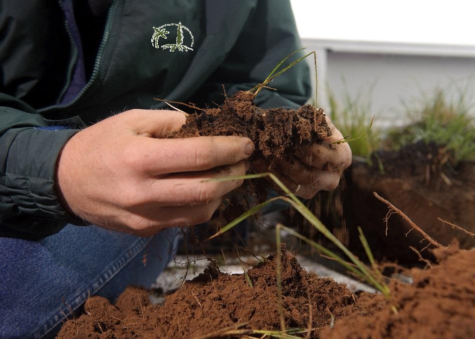 Terre végétale pour les professionels