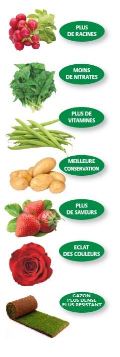 Fertilisant bio 100% naturel